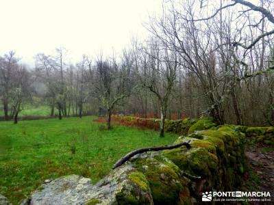 Valle del Ambroz-Sierra de Bejar - Gredos; excursiones y senderismo;silla de felipe ii el escorial